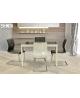 Tavoline + 4 karrige